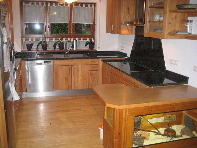 Küche mit Terrarium